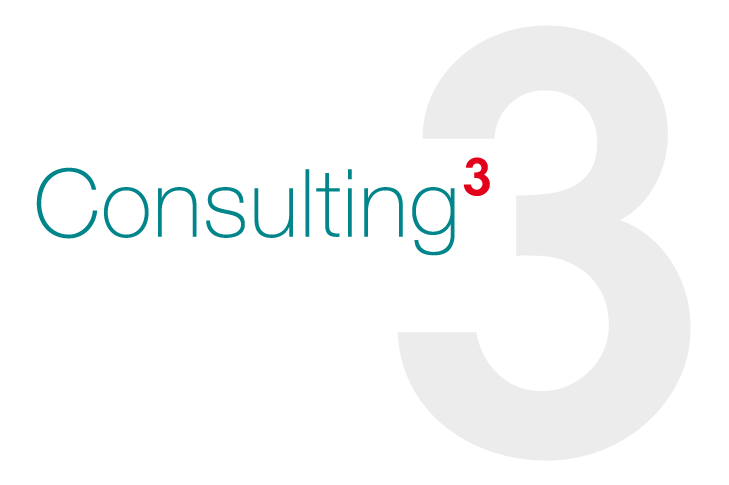 Consulting 3